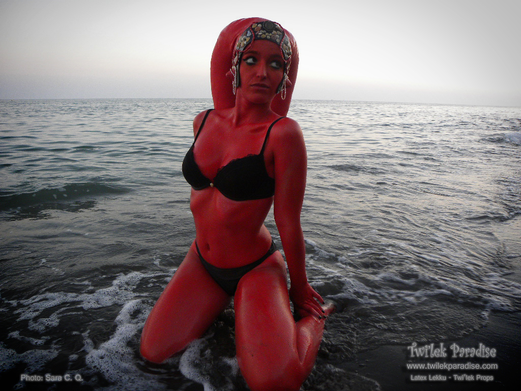 Red_twilek_go_to_beach_in_twilight01